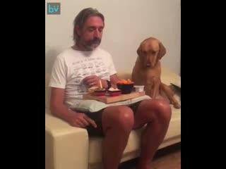 Мне не интересна твоя еда