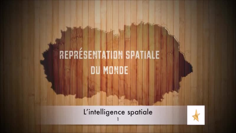📋 Qu'est-ce que l'Intelligence Spatiale ? {Howard Gardner} ✔2 🇫🇷