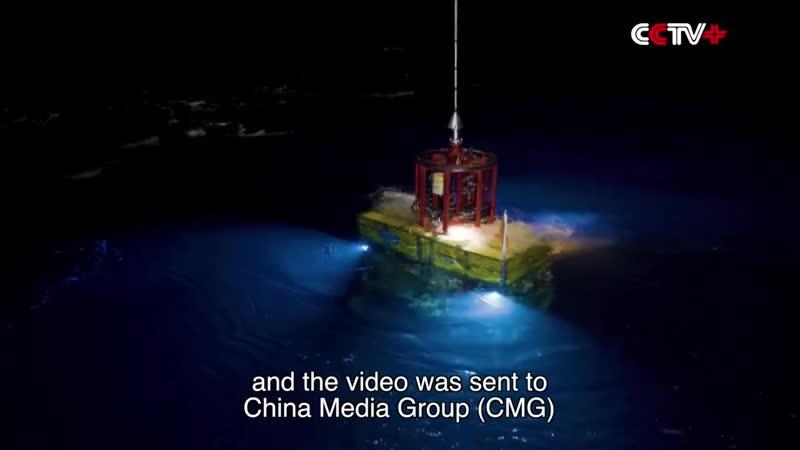 Китайский батискаф провел онлайн трансляцию со дна Марианской впадины