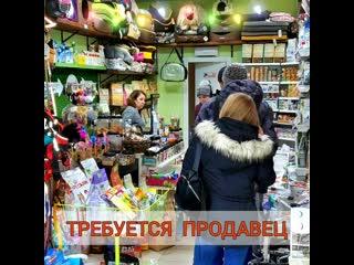 Продавец Зоомагазин Рыжий Кот 31