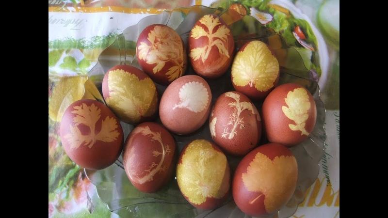 Простейший красивый и безвредный способ окрашивания яиц на Пасху
