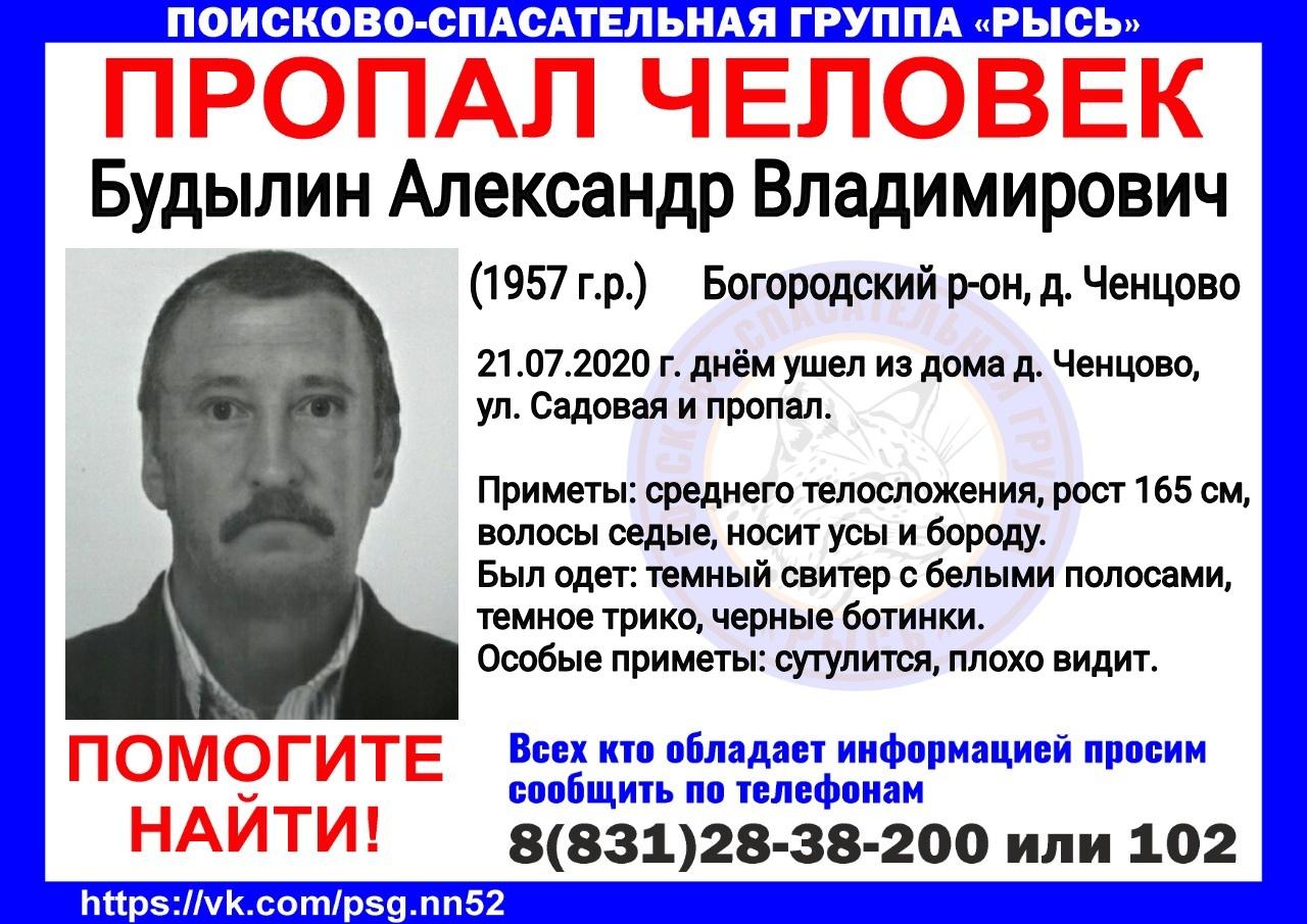 Будылин Александр Владимирович, 1957 г. р., Богородский р-он, д. Ченцово