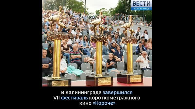 Стали известны победители фестиваля короткометражного кино Короче