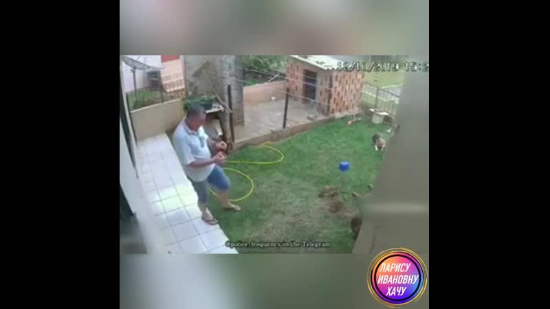 Как вывести крота из огорода 😂