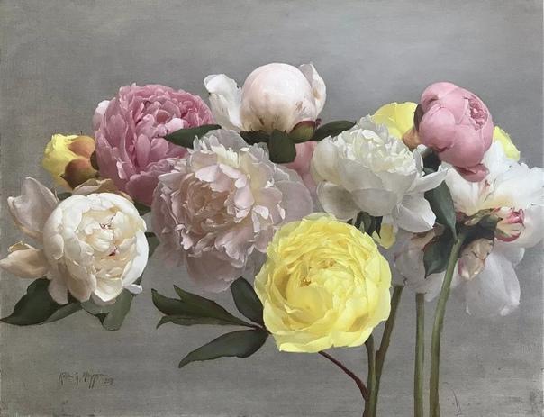 Кэти Уиппл родилась в 1991 году в штате Индиана, США После окончания средней школы Кэти переехала в Нью-Йорк, чтобы учиться академической живописи в Grand Central Atelier.С самого раннего
