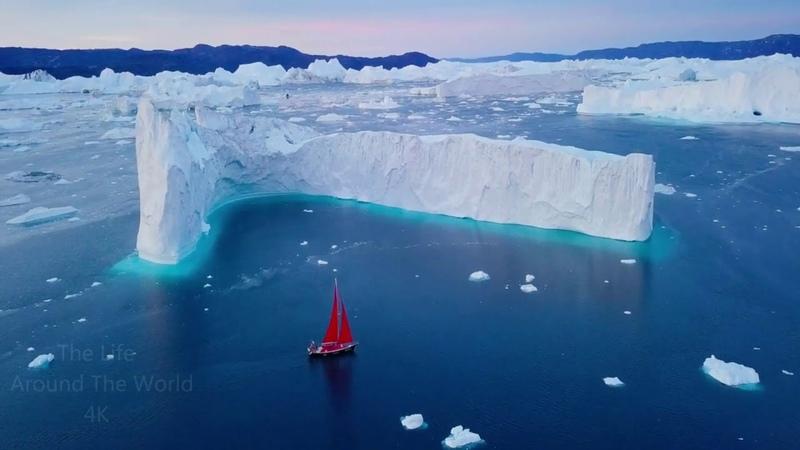 21 век Так что такое Арктика на самом деле