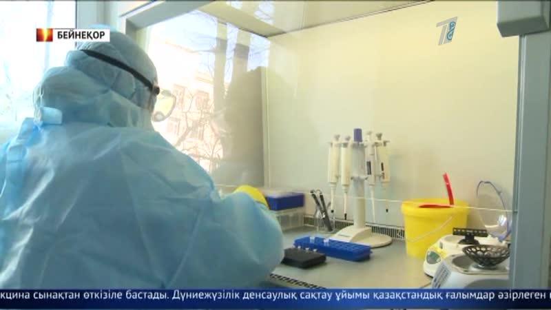 Отандық ғалымдар коронавирусқа қарсы вакцинаны сынақтан өткізуде