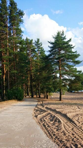 . Солнечное, Ленинградская область - фото - Фото