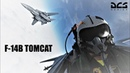 DCS World - F-14B Tomcats of VF-31 Tomcatters