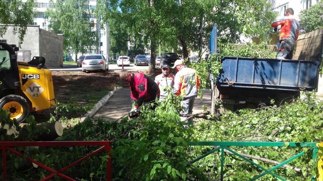 Ул. Профсоюзная, 78.утилизация спиленных деревьев