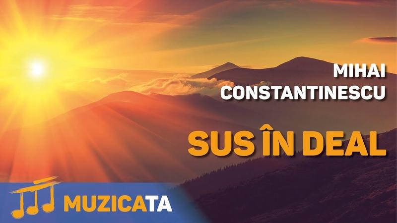 Sus in deal Mihai Constantinescu