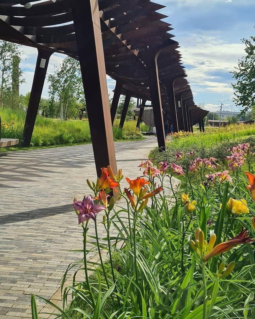 Яркие фото от наших подписчиков из парка