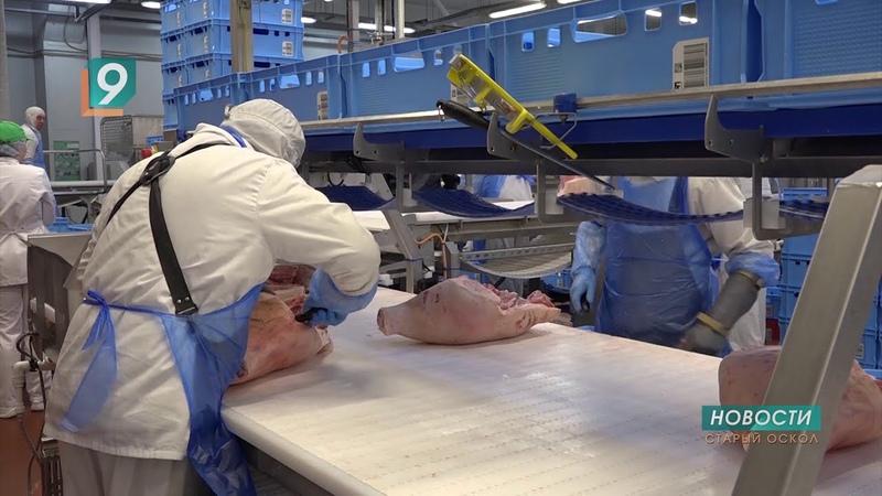 Компания ПРОМАГРО выделила 11 тонн мяса для обеспечения питанием на рабочих местах медиков