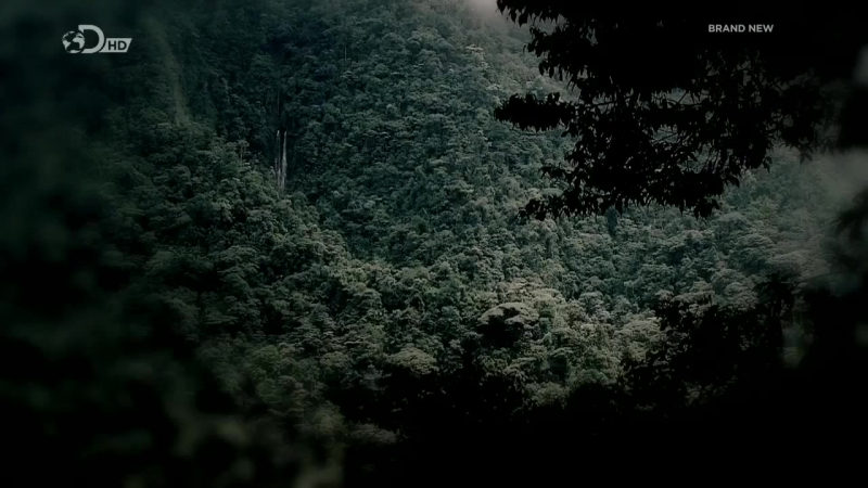 Беар Гриллс По Стопам Выживших HD 720p Escape From Hell 1x01 Джунгли