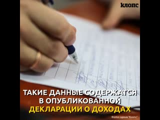 Кропоткин: декларация о доходах