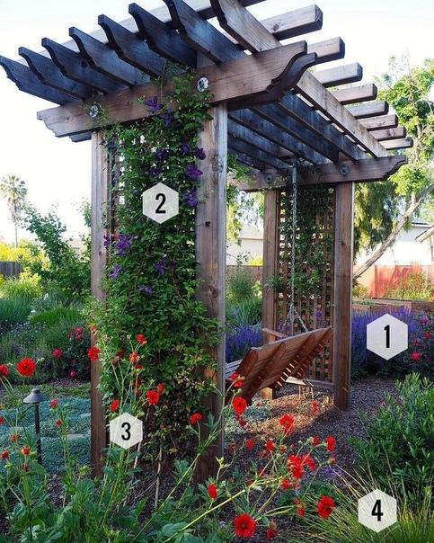 Вертикальное озеленение в саду.