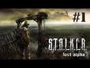 ПРИВЕТ, МЕЧЕНЫЙ I S.T.A.L.K.E.R. Lost Alpha I Стрим 1