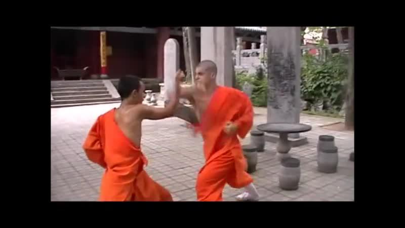 Ba Bu Lian Huan Quan Gong Fang Ji Fa 八步連環拳攻防技法