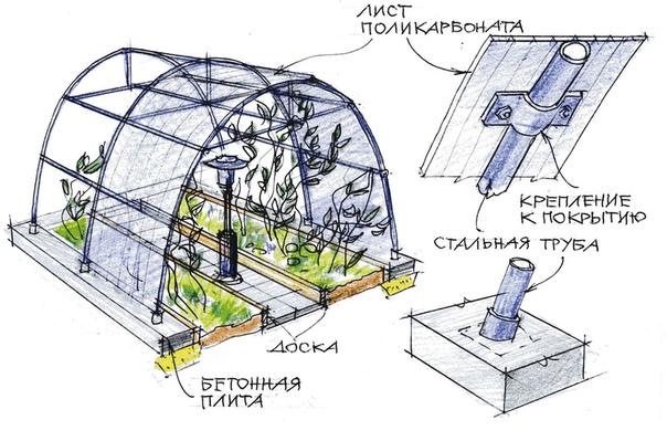 Как соорудить теплицу из поликарбоната своими руками