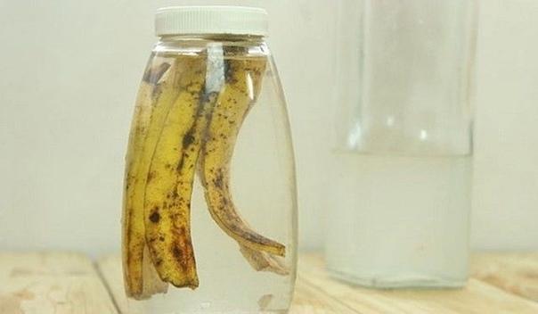 А вы знали 15 невероятных применений банановой кожуры...