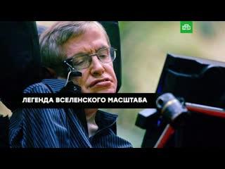Человек-вселенная: невероятная история Стивена Хокинга
