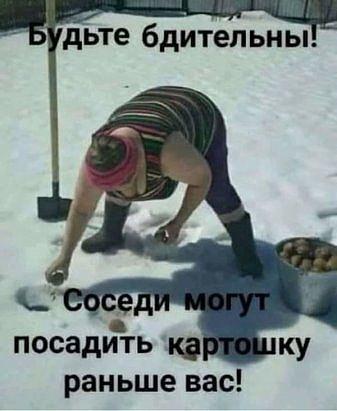 В некоторых регионах садоводы стараются посадить всё раньше соседа! )))