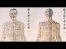 Традиционная китайская медицина.Семинар к.м.н. Зайцева С.В. Легкие в ТКМ(3). Синофарм - СПб