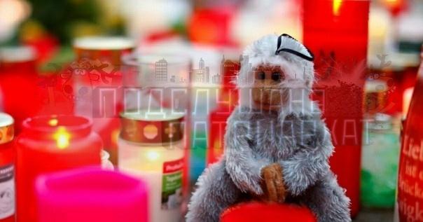 Германии три шкуры признались, что виновны в пожаре в зоопарке Погибли более 30-ти животныхВ новогоднюю ночь шкуры запустили пять китайских фонариков с благими пожеланиями, но отсутствием