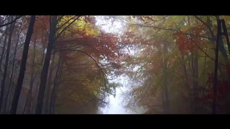 DillanPonders PLANET PONDERS Prod. Dutch Revz CAR VIDEO GANGTER SQUAD