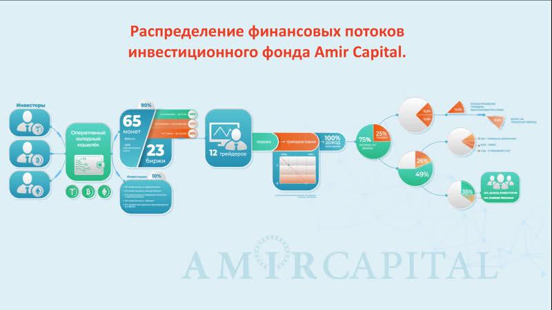 Распределение прибыли фонда Amir Capital