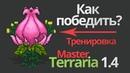 Master mode terraria 1.4 - ПЛАНТЕРА   PLANTERA - тактика [тренировка террария-стрим]