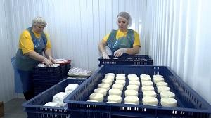 Почти 14% липчан работают в малом бизнесе