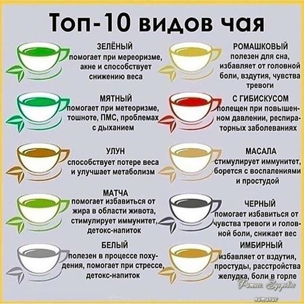Тoп-10 видoв чaя