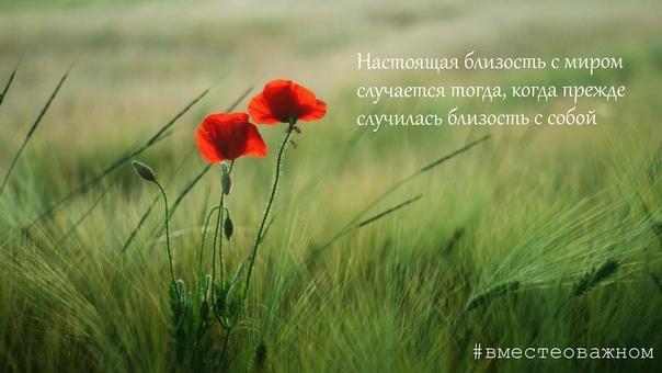 Истинная близость возможна лишь тогда, когда два человека способны понять и принять друг друга такими, какие они есть