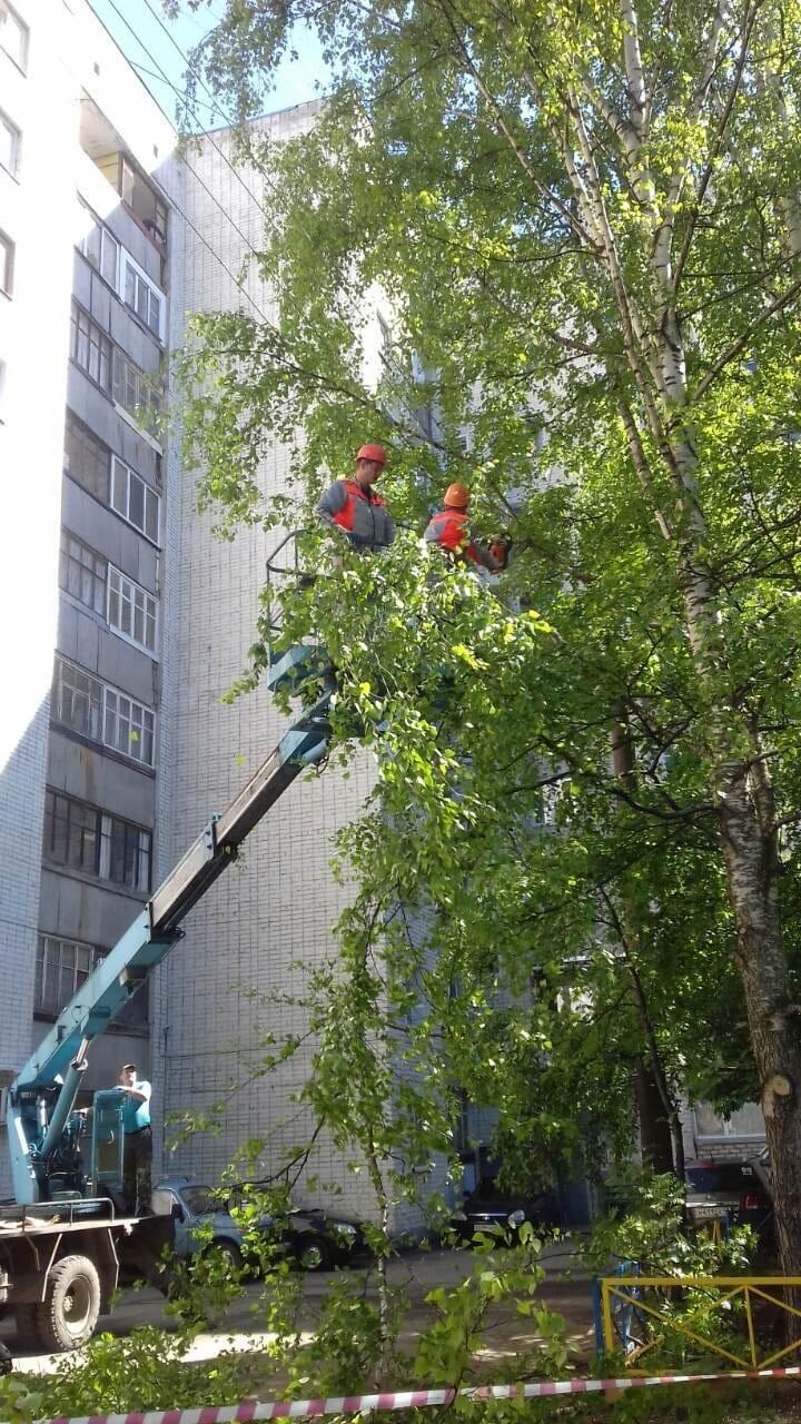 Ул. Профсоюзная, 78.спиливание аварийных деревьев