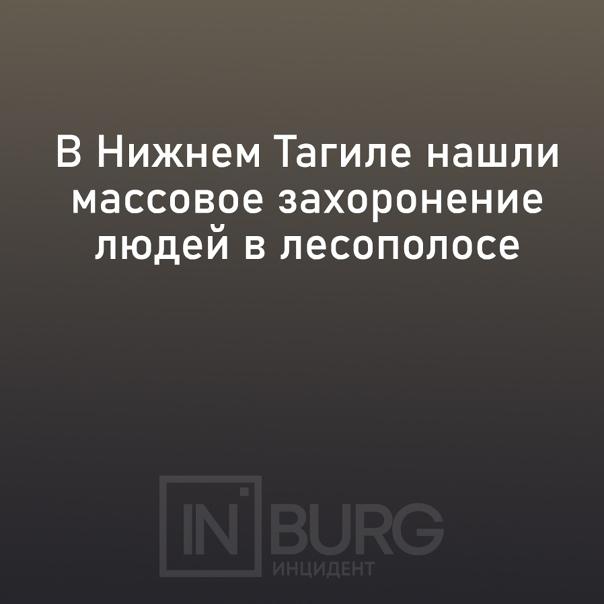 В Ленинском районе Нижнего Тагила в лесополосе наш...