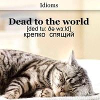 Фотография профиля Ирины Воронец ВКонтакте
