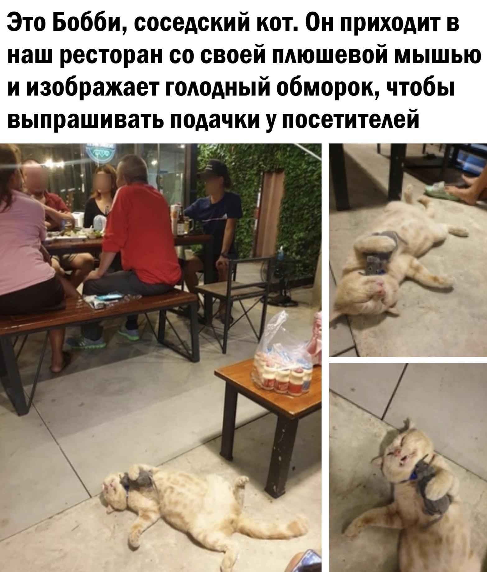 Пятничное с картинками)))