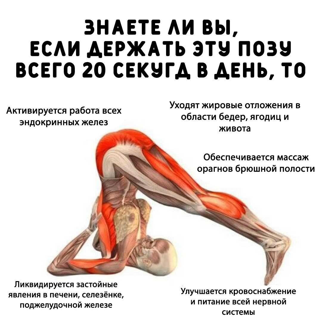 Всего одно упражнение йоги для продления молодости!