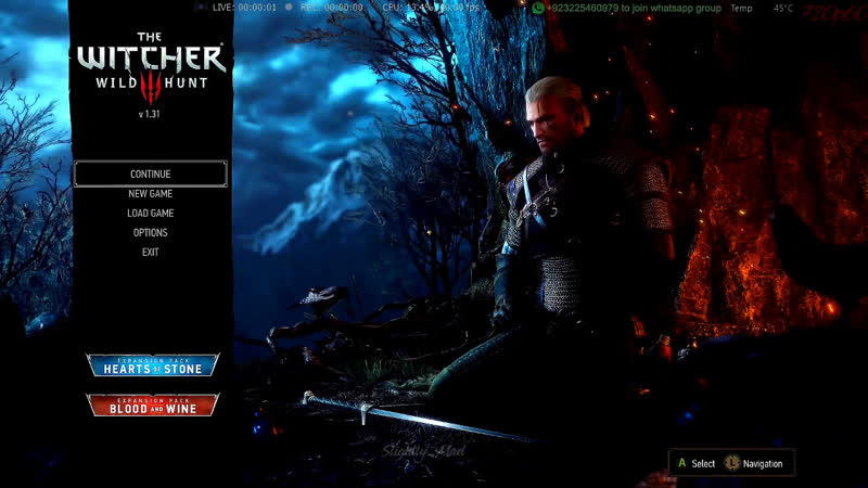 Campaign Part 8 - The Witcher 3 Wild Hunt