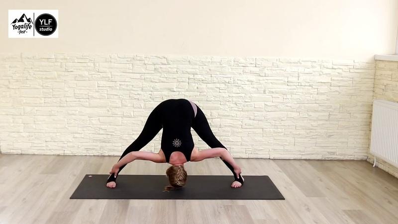 Красивая йога. Ролик. Елена Бакай 2017