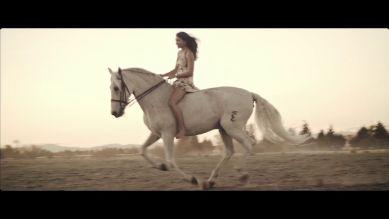 Sia - Unstoppable (equestrian original art video)