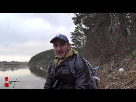 Безклевье Простая рыбалка на донку