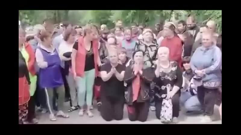 ОБРАЩЕНИЕ К ПУТИНУ НА КОЛЕНЯХ [Рофлы и Панчи]