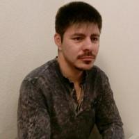 Дмитрий Комиссаров