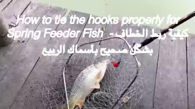 Tie the Fish Hooks Properly on the Feeder Fish اربط خطاف السمك بشكل صحيح على وحدة تغذية الأسماك mp4