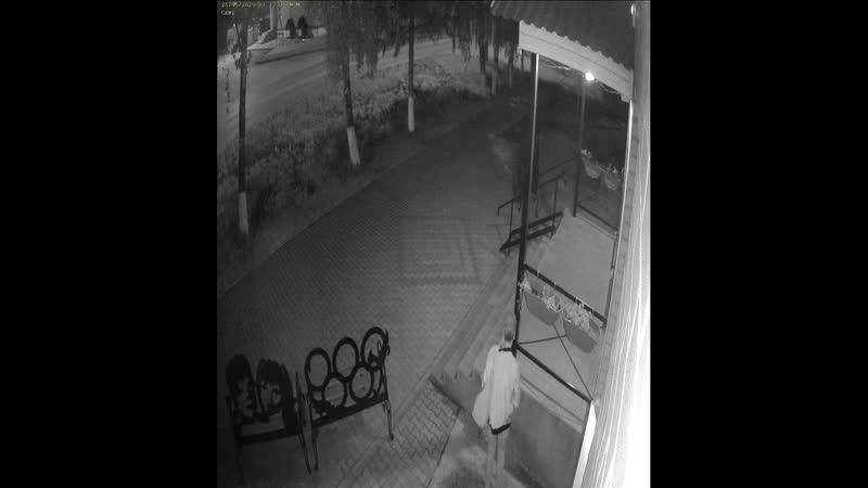 Ночная читательница своровала сажены у библиотекарей из Болотного
